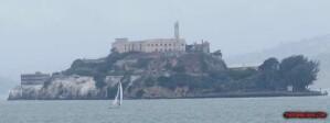 thekumachan_alcatraz-4