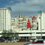 thekumachan_Las_Vegas_Nevada-18