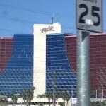 thekumachan_Las_Vegas_Nevada-26