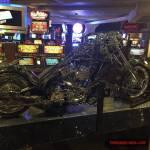 thekumachan_Las_Vegas_Nevada-60