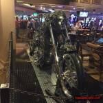 thekumachan_Las_Vegas_Nevada-61