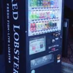thekumachan_japanese_vending-02