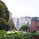thekumachan_SF_Lombard_Street-21