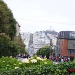 thekumachan_SF_Lombard_Street-24