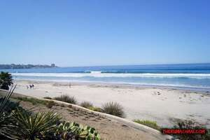thekumachan_la_jolla_san_diego_california-1