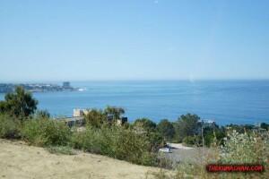 thekumachan_la_jolla_san_diego_california-10