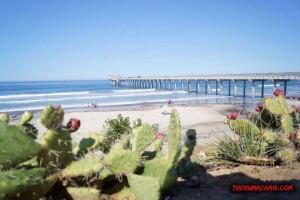 thekumachan_la_jolla_san_diego_california-5