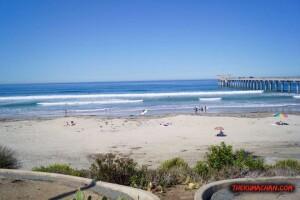 thekumachan_la_jolla_san_diego_california-6