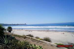 thekumachan_la_jolla_san_diego_california-7