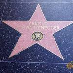 thekumachan_2016_Arnold_Schwarzenegger_star