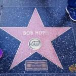 thekumachan_2016_Bob_Hope_star-1