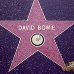 thekumachan_2016_David_Bowie_star