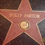 thekumachan_2016_Dolly_Parton_star