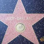 thekumachan_2016_Judy_Garland_star