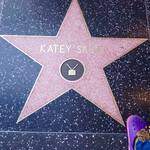 thekumachan_2016_Katey_Segal_star