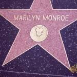 thekumachan_2016_Marilyn_Monroe_star