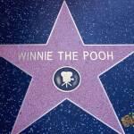 thekumachan_2016_Winnie_the_Pooh_star