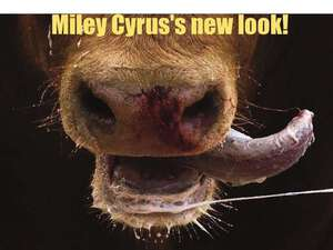 New_Look_Miley_Cyrus
