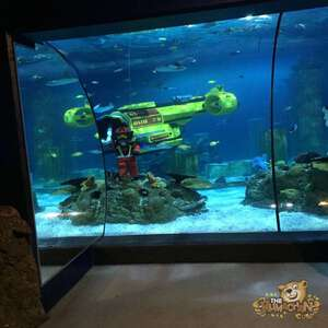 thekumachan_Sea_Life_Aquarium-23