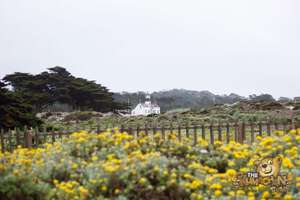 thekumachan_Monterey_California-06