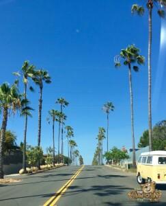 thekumachan_living_San_Diego-1