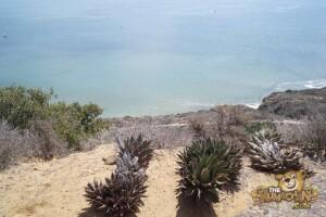 thekumachan_Cabrillo_Monument_San_Diego-5