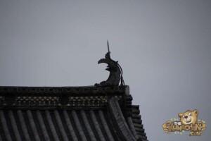 thekumachan_matsumoto_castle-008