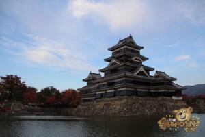 thekumachan_matsumoto_castle-009