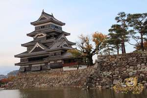 thekumachan_matsumoto_castle-018