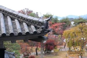 thekumachan_matsumoto_castle-048