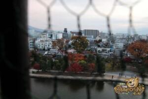 thekumachan_matsumoto_castle-075