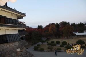 thekumachan_matsumoto_castle-080