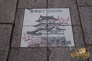 thekumachan_odawara_castle-03