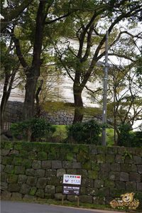 thekumachan_odawara_castle-07