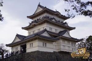 thekumachan_odawara_castle-11