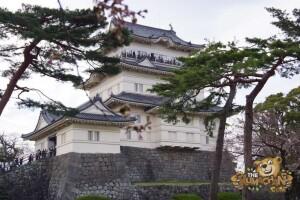 thekumachan_odawara_castle-12