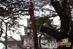 thekumachan_odawara_castle-17
