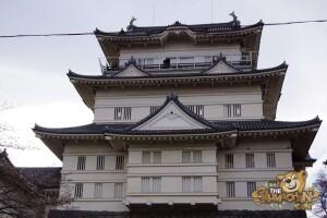 thekumachan_odawara_castle-18
