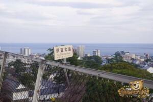 thekumachan_odawara_castle-37