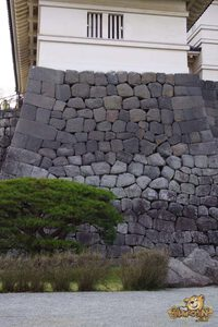 thekumachan_odawara_castle-51