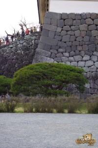 thekumachan_odawara_castle-52