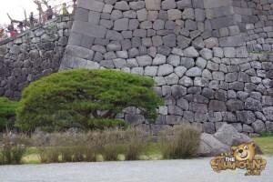 thekumachan_odawara_castle-53