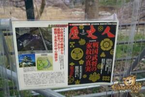 thekumachan_odawara_castle-71
