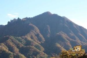 thekumachan_drive_to_nagano-17
