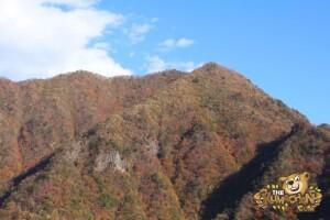 thekumachan_drive_to_nagano-23