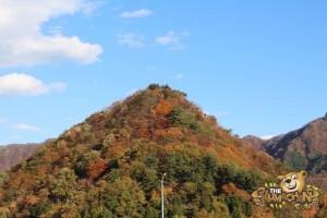 thekumachan_drive_to_nagano-25