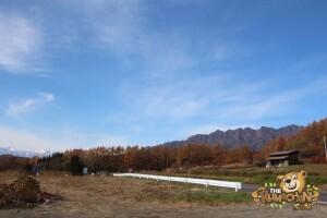 thekumachan_drive_to_nagano-30
