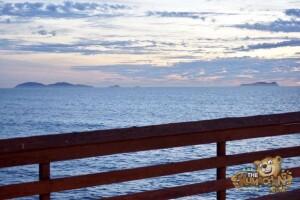 thekumachan_imperial_beach_pier-03